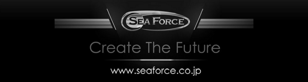 Create the Future Sea Force